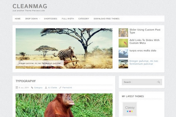 CleanMag Free WordPress Theme