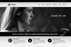 Strange - A Modern Portfolio WordPress Theme