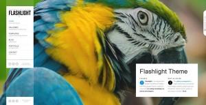 Flashlight - A fullscreen background portfolio theme