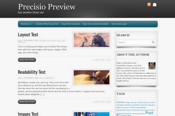Precisio Free WordPress Theme