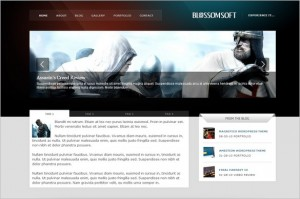 Blossomsoft is a free WordPress Theme by MOJO Themes