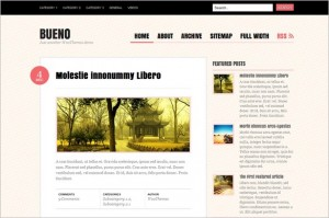Bueno is a free WordPress Theme from Woo Themes