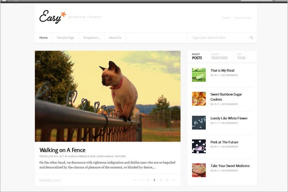 Easy - A Magazine WordPress Theme with Responsive design