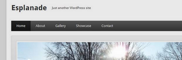 Esplanade is a free WordPress Theme by One Designs