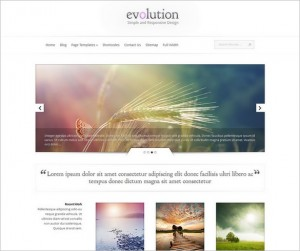 Evolution - A Responsive WordPress Theme