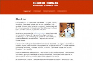 Profile is a free WordPress Theme by WPZOOM