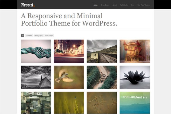 Reveal Responsive Portfolio WordPress Theme