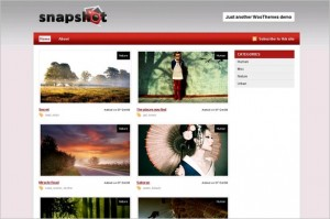 Snapshot is a free WordPress Theme by Woo Themes