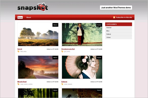 Snapshot is a free WordPress Theme by Woo Themes