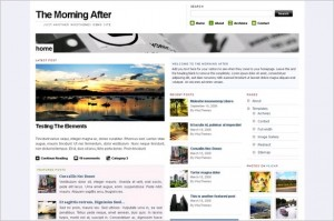 The Morning After is a free theme by Woo Themes