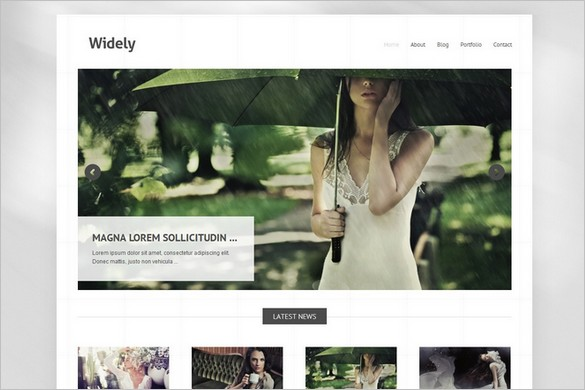 Widely - A Free WordPress Theme by Themes Kingdom