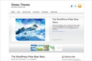 Business Pro Blogger is a free WordPress Theme
