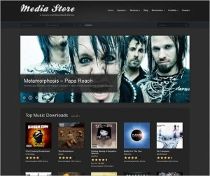 Media Store is a review and downloads theme