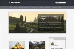 Themnific Basic is a free WordPress Theme