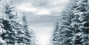 Falling Snow is a WordPress Plugin