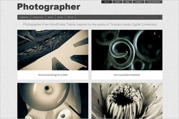 Photographer is a free WordPress Theme by Dessign.net