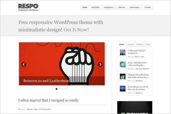 Respo - A Free Responsive WordPress Theme