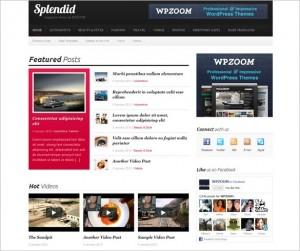 Splendid WordPress Theme by WPZOOM