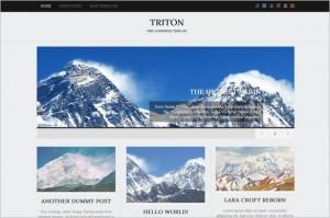 Triton Lite is a free WordPress Theme