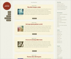 DailyJournal is a WordPress Theme by Elegant Themes