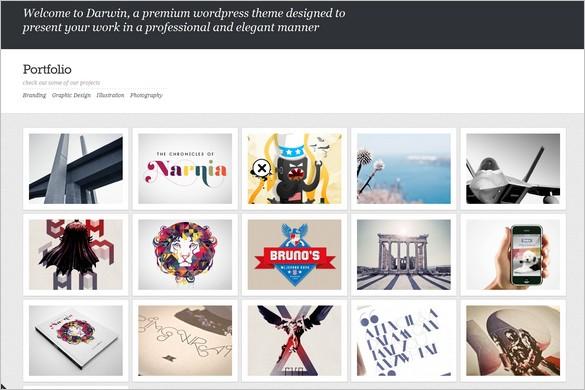 Darwin is a portfolio WordPress Theme