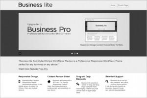 Business lite is a free WordPress Theme
