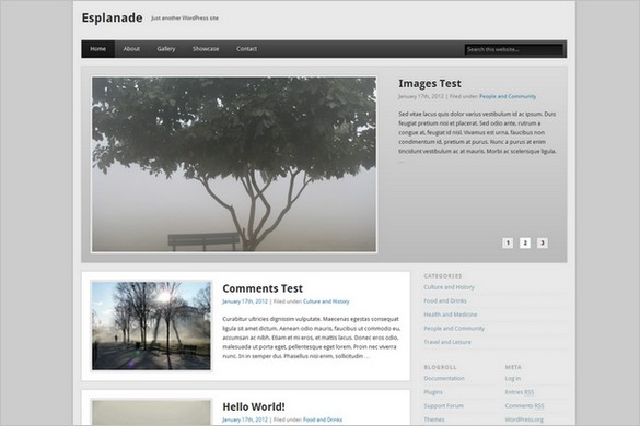 Esplanade is a free WordPress Theme by One Designs