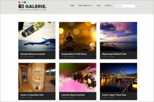 Galerie is a portfolio WordPress Theme by ColorLabs