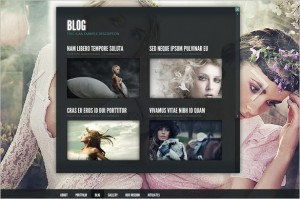 Gleam is a WordPress Theme by Elegant Themes
