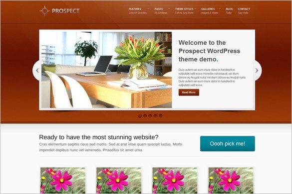 2 free wordpress themes from wp business bundle prospect is a free wordpress theme friedricerecipe Gallery