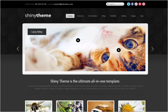 Shiny Theme - Powerful WordPress Theme