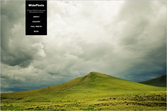 WidePhoto is a Free WordPress Theme by Buzzrain