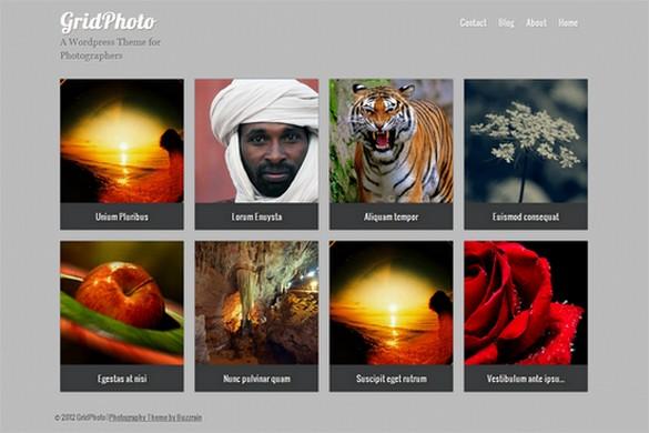 GridPhoto is a free WordPress Theme by Buzzrain