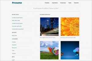 Prosume is a free WordPress Theme by Site5