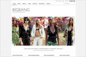 BigBang is a Portfolio WordPress Theme