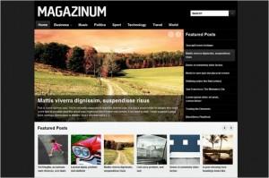 Magazinum is a Magazine WordPress Theme
