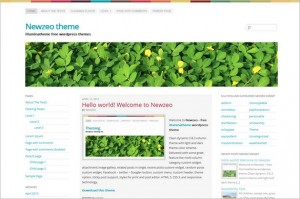 Newzeo is a free WordPress Theme by Illumina Theme