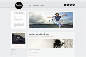 Perosan is a premium WordPress Theme by Theme Furnace