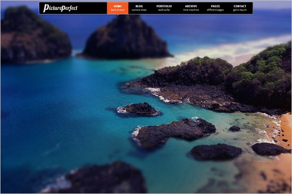 PicturePerfect is a Portfolio WordPress Theme