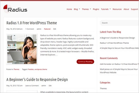 Radius is a free WordPress Theme