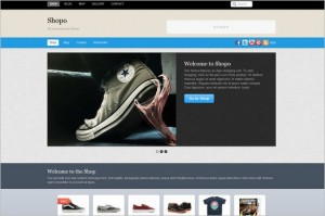 Shopo is a Ecommerce WordPress Theme by Themify