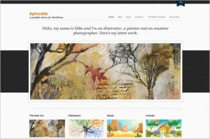 Aphrodite is a WordPress Theme from cssigniter.com