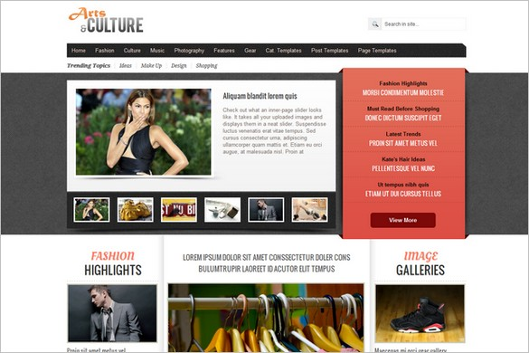 Arts and Culture is a Magazine WordPress Theme by Gabfire