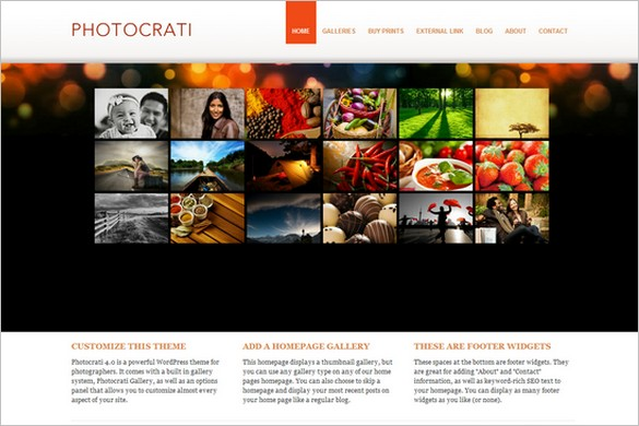 Photocrati is a WordPress theme for photographers