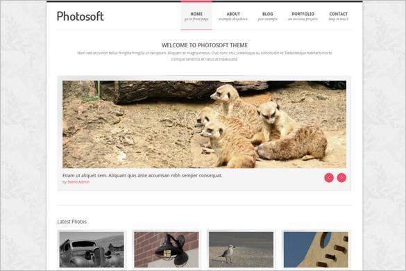 Photosoft is a Photography WordPress Theme