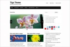Tiga is a free WordPress Theme