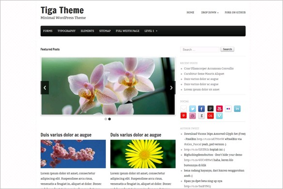 Tiga is a free WordPress Theme