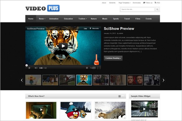 25 Best Video and Multimedia WordPress Themes