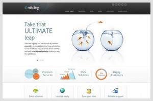 Enticing is a Portfolio WordPress Theme