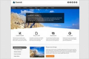 Everest is a Responsive Business WordPress Theme
